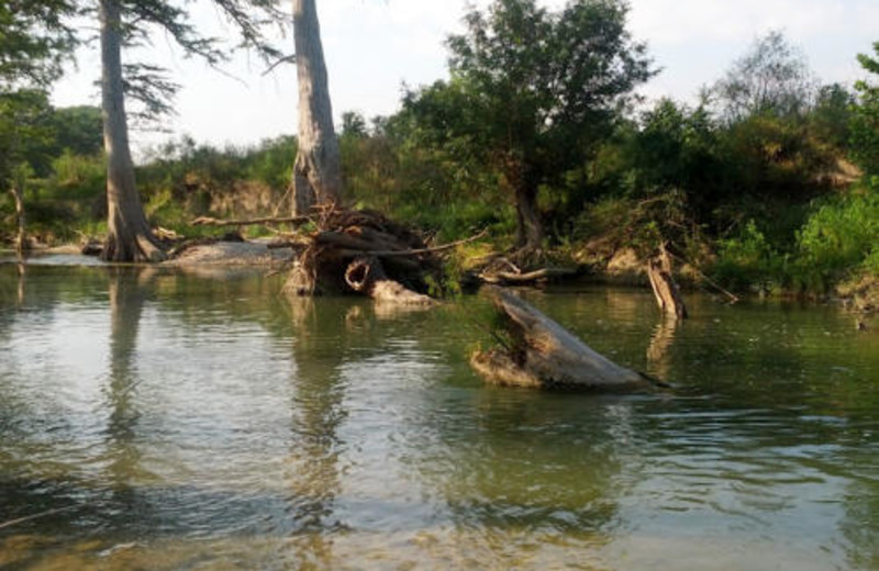 Guadalupe River at Haven River Inn