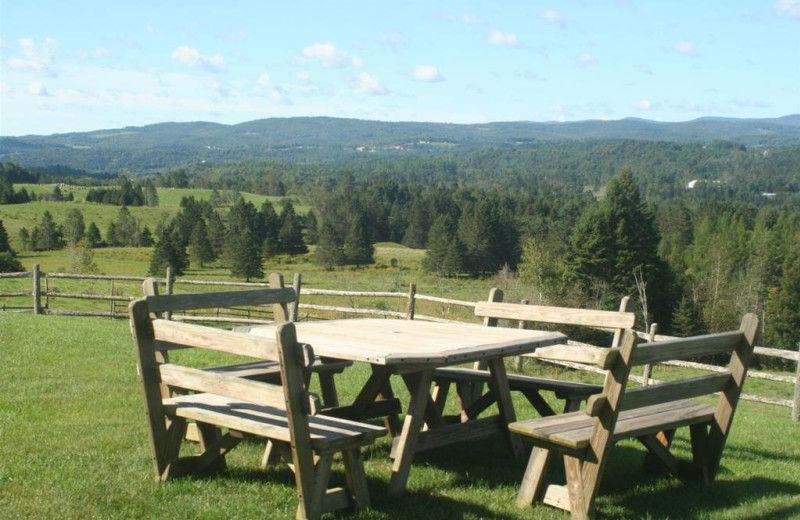 Picnic area at The Wildflower Inn.