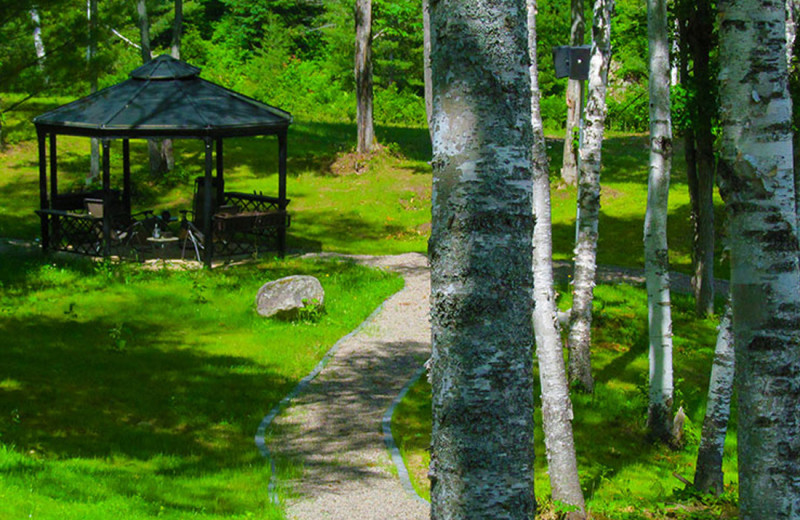 The gazebo is a great place to cuddle up with a book, or stare across the lake to watch for deer and moose.
