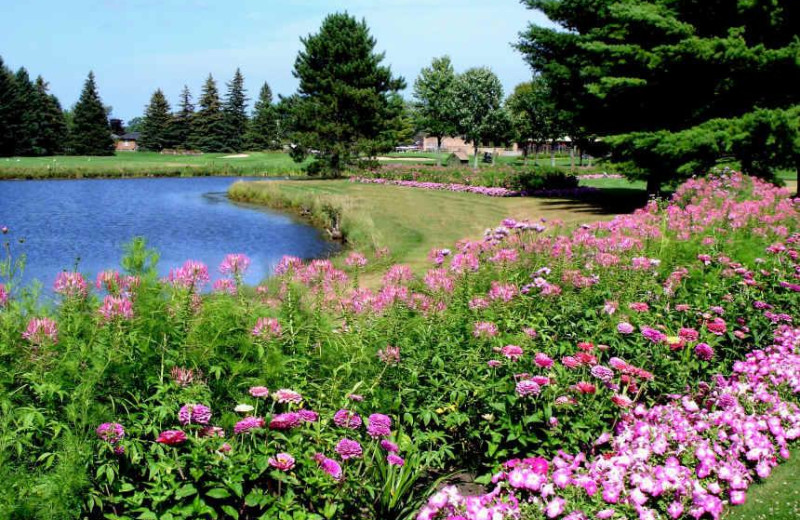 Lake view at Lakewood Shores Resort.