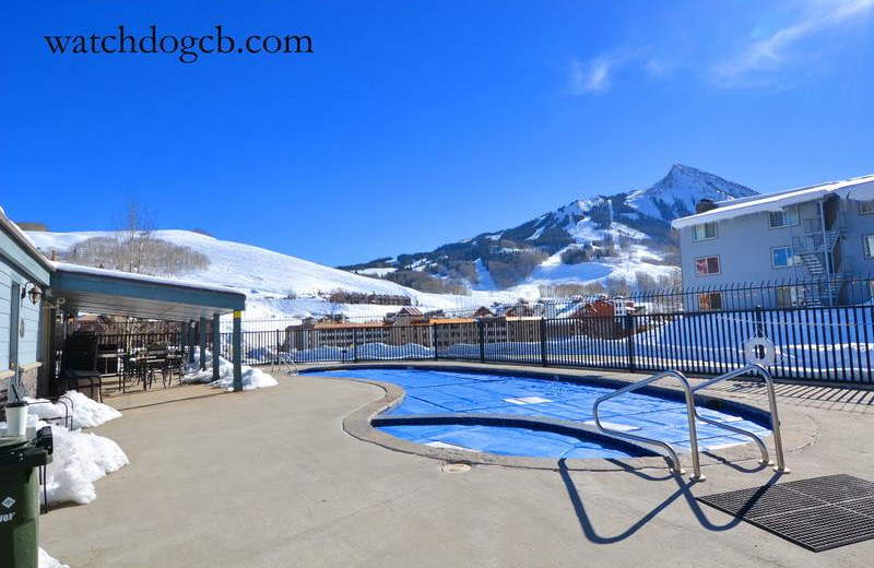 Rental outdoor pool at Watchdog Property Management LLC.