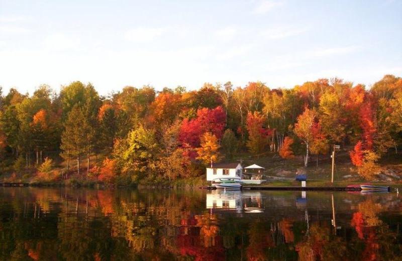 The Lake at Northern Lights Resort