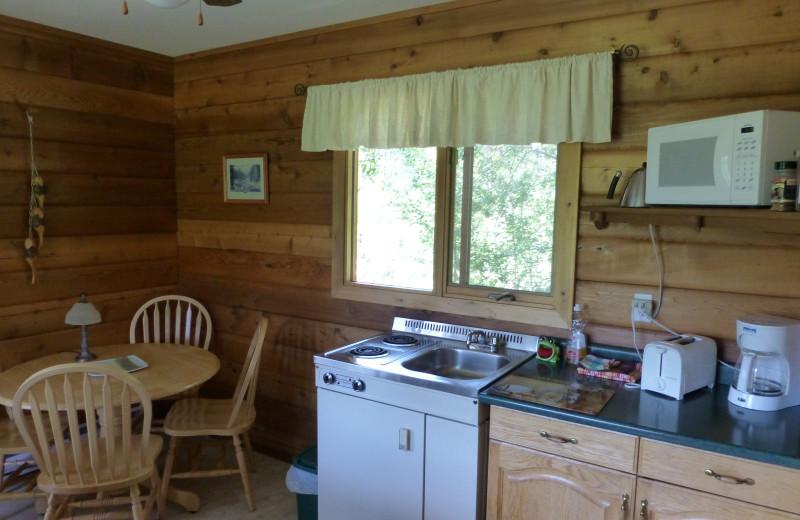Cabin kitchen at Mica Mountain Lodge & Log Cabins.