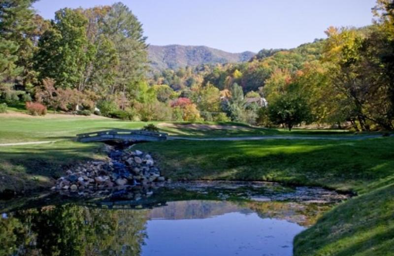 Golfing at The Waynesville Inn Golf Resort & Spa