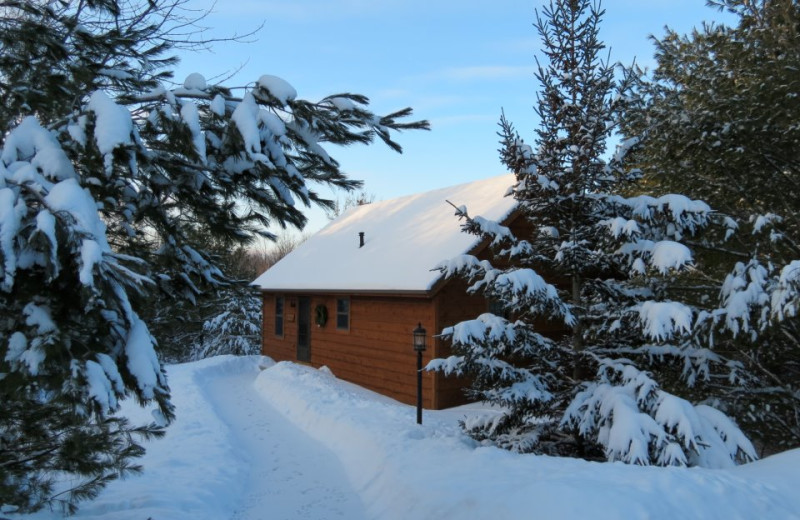 Tamarack Cabin during winter at Chanticleer Guest House.