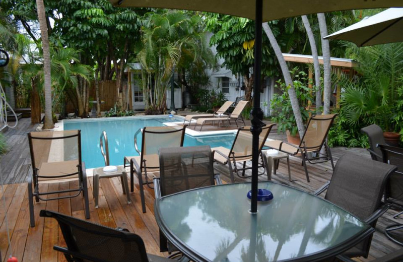 Outdoor pool at Papa's Hideaway.