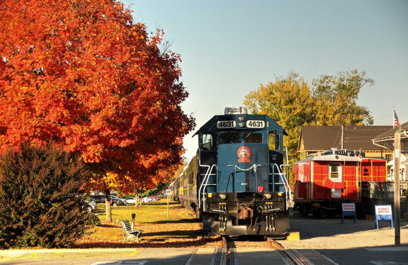 The Blue Ridge Scenic Railway near Southern Comfort Cabin Rentals.