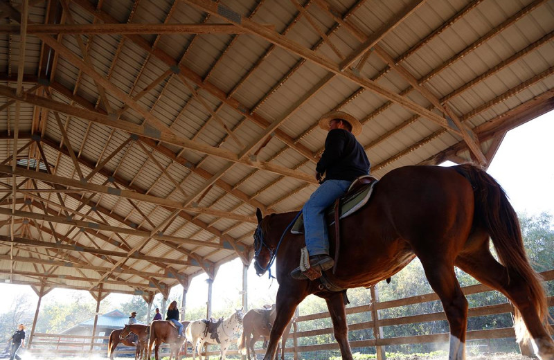 Horse ranch at YMCA Trout Lodge & Camp Lakewood.