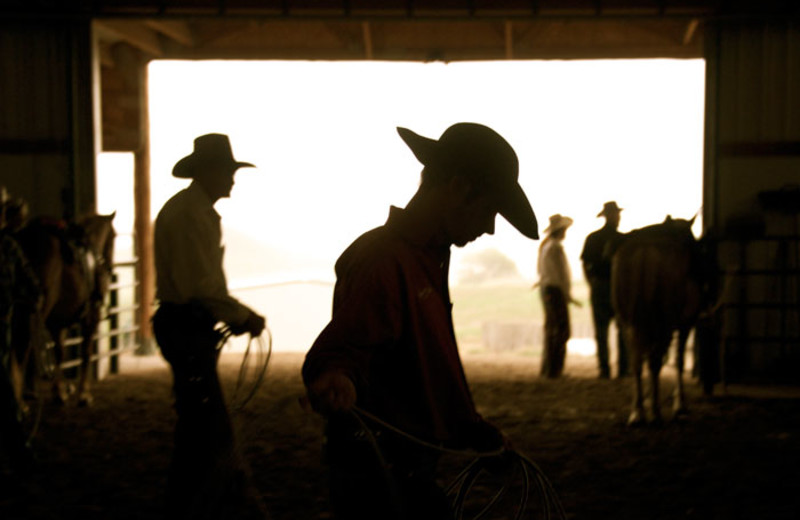 Cowboys at Colorado Cattle Company Ranch.