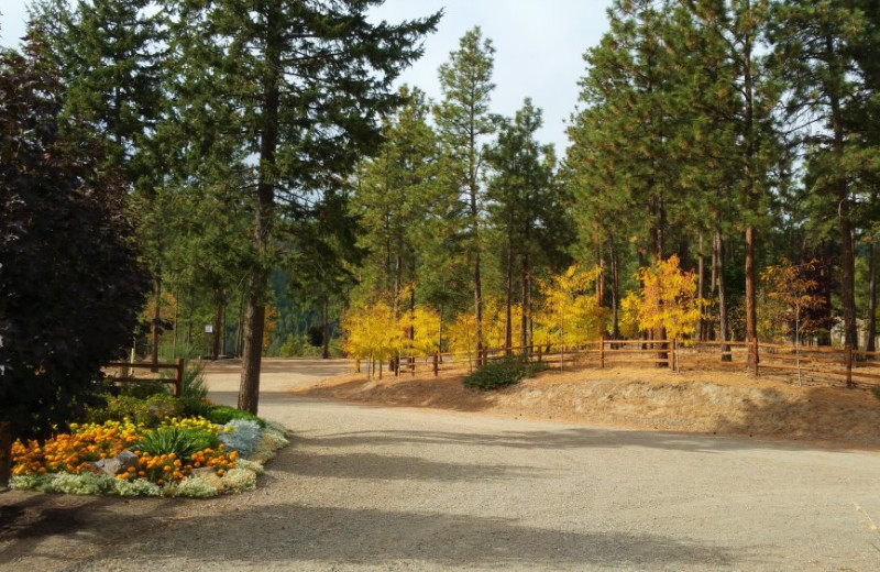 Grounds at Powers Creek Retreat.
