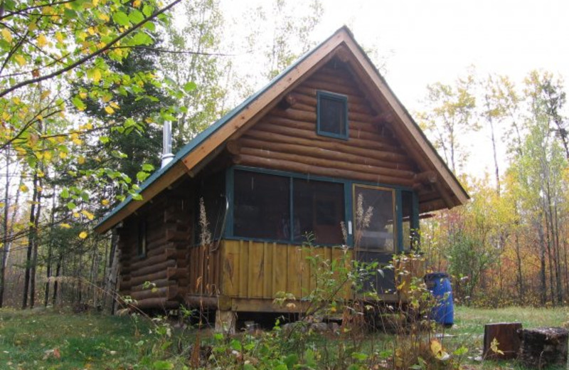Cabin exterior at Log Cabin Hideaways.