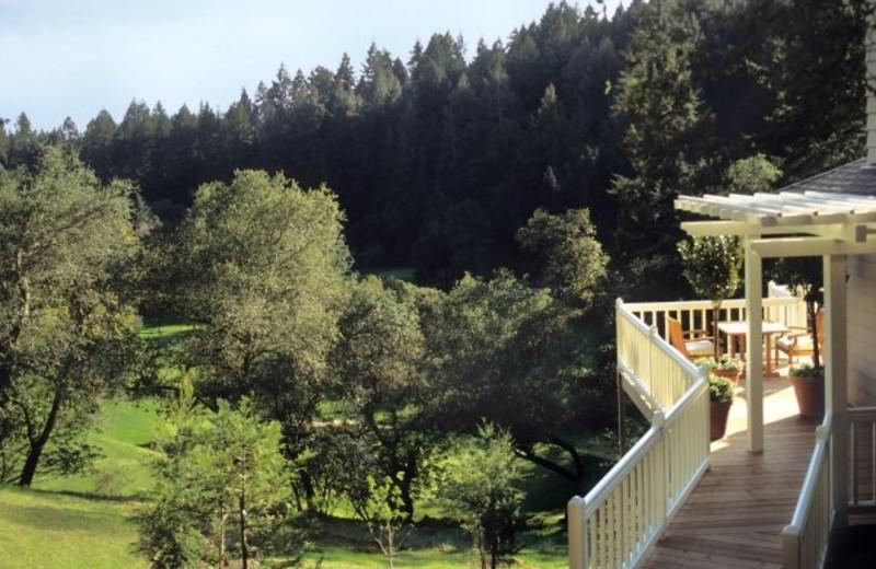 Beautiful view at Meadowood Napa Valley.