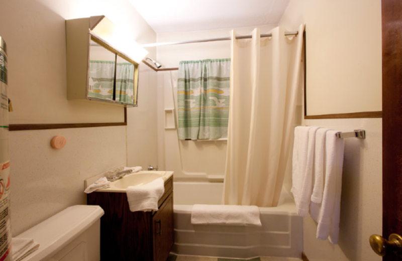 Guest bathroom at Delaware Court Motel.