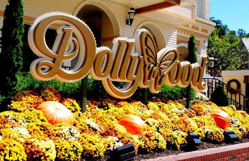Dollywood amusement park near Chalet Village.