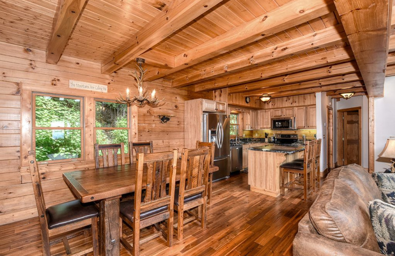 Cabin kitchen at Smoky Mountain Retreat Realty.
