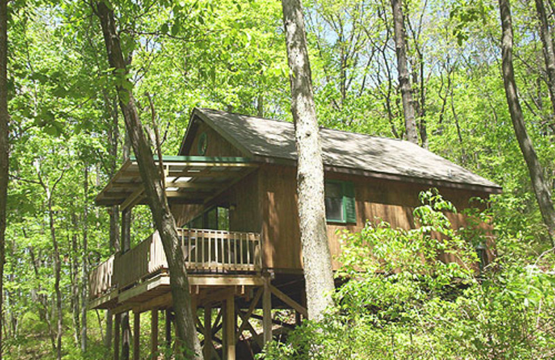 Cabin exterior at Nature's Pointe Cabins.