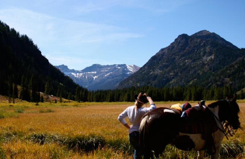 Scenic Surroundings at Bill Cody Ranch