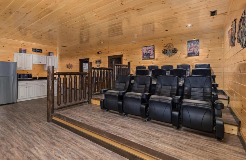 Rental theater at Stony Brook Cabins LLC.