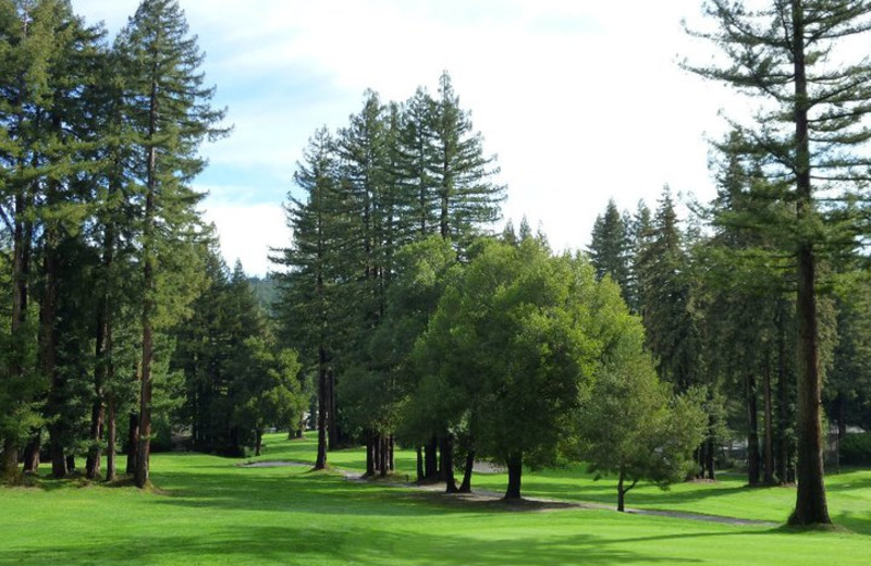Golf course at Boulder Creek Golf & Country Club.