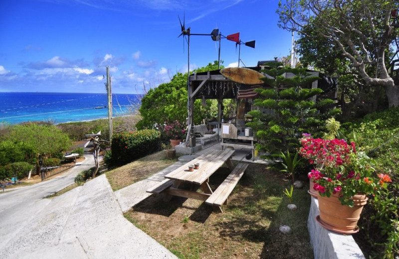 Picnic area at Virgin Islands Campground.