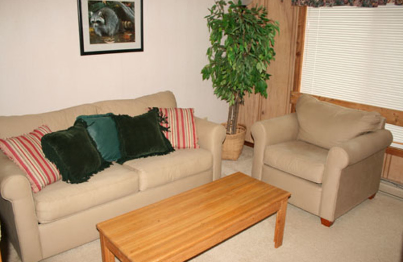 Vacation rental living room at Snowshoe Properties Management.