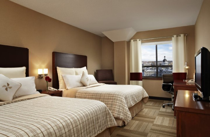 Guest Room at Four Points by Sheraton Kingston