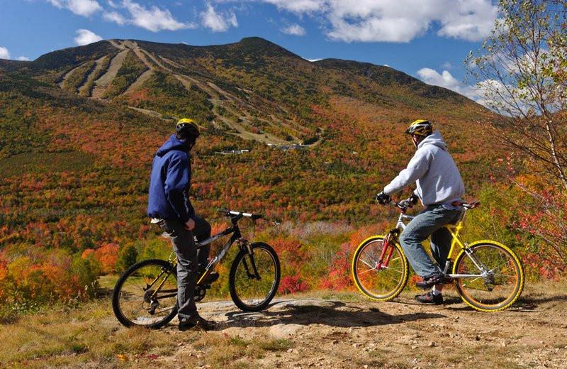 Biking near Best Western Silver Fox Inn.