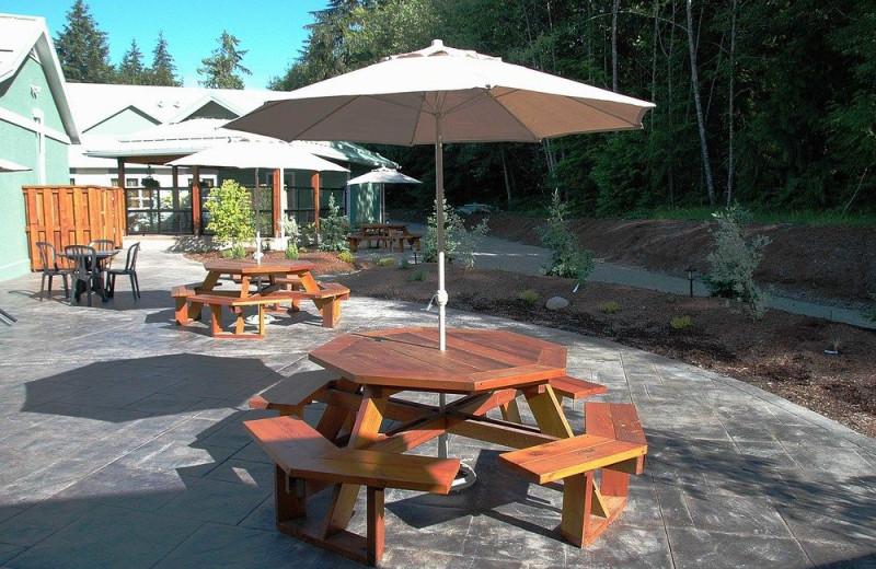 Picnic patio at Honeymoon Bay Lodge & Retreat.
