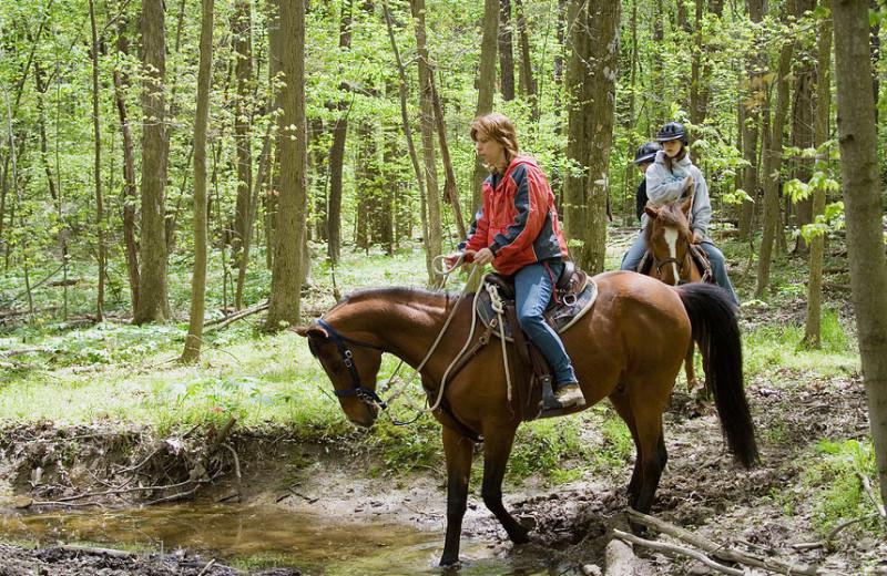 Horseback riding at Mountain Shadows Resort.