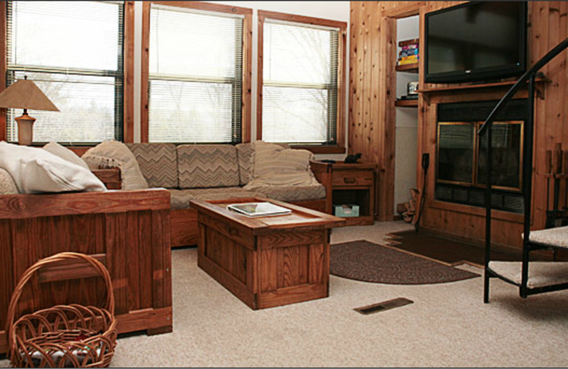 Cabin living room at Black Bear Resort Rentals.