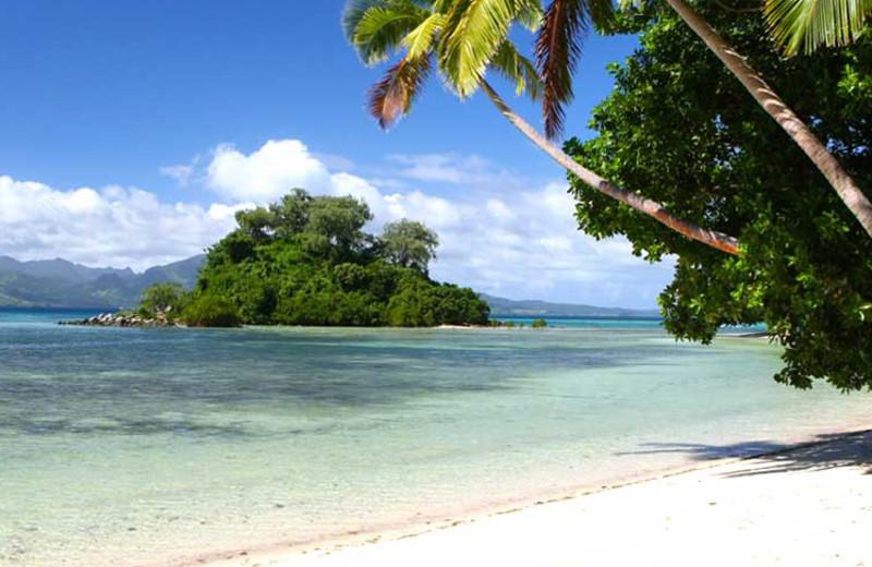 The beach at Naigani Island Resort.
