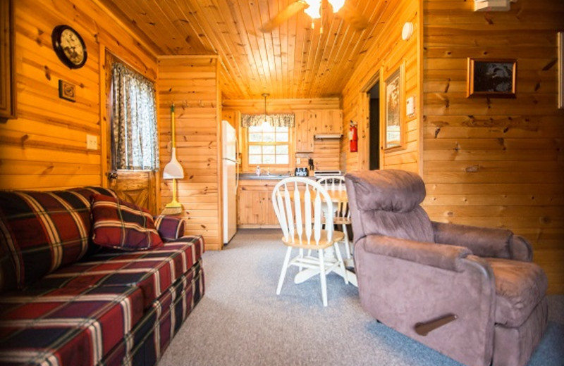 Cabin living room at Wilderness Bay Lodge and Resort