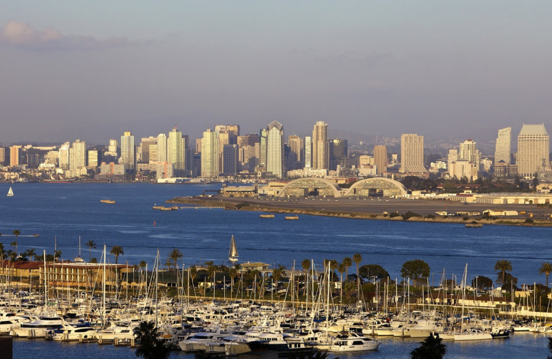 View of downtown San Diego at Bay Club Hotel & Marina.
