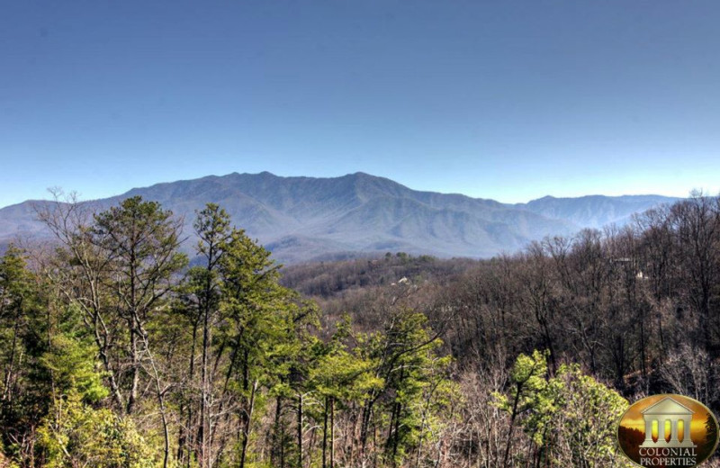 Smokey Mountains at Colonial Properties