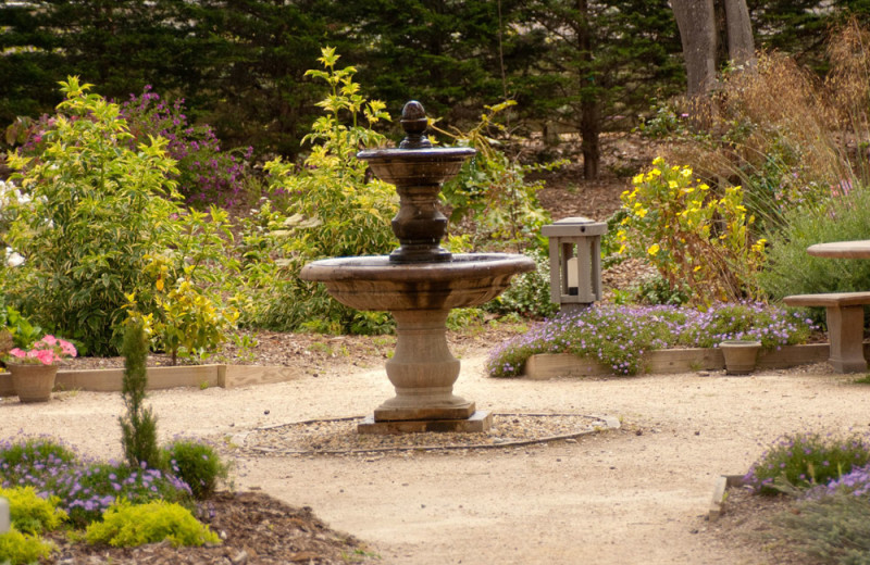 Garden at Carmel River Inn.