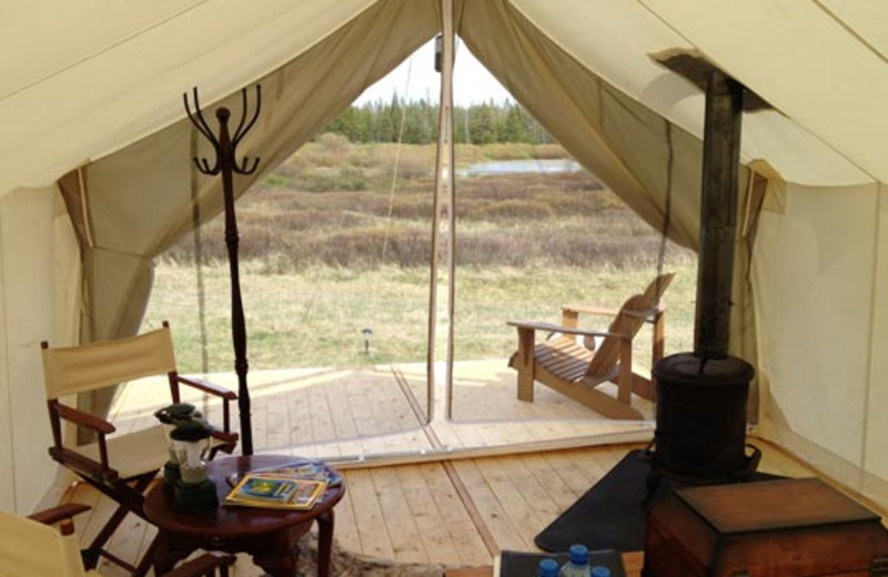 Looking Out from Tent at Yellowstone Under Canvas