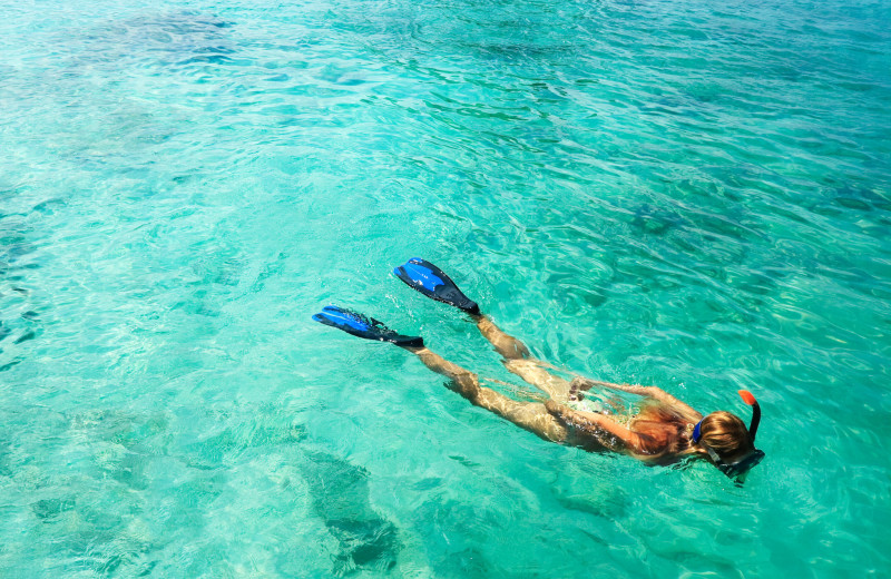 Snorkeling at Island City House Hotel.