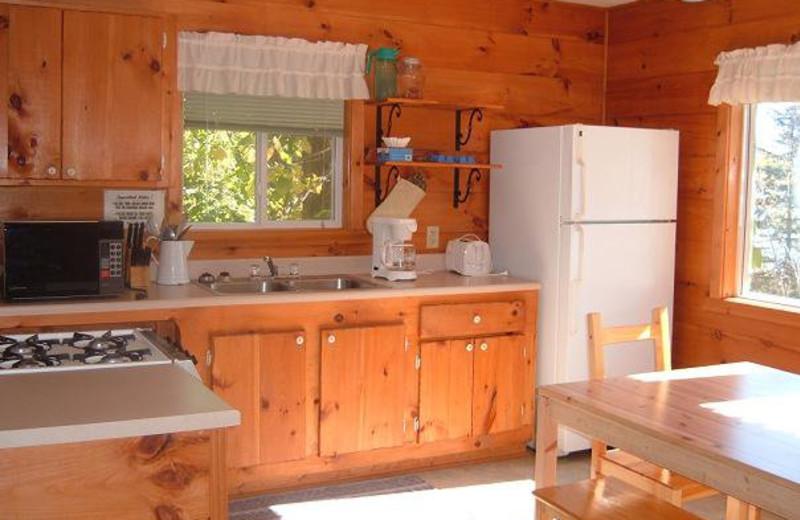 Cabin Kitchen at Everett Bay Lodge