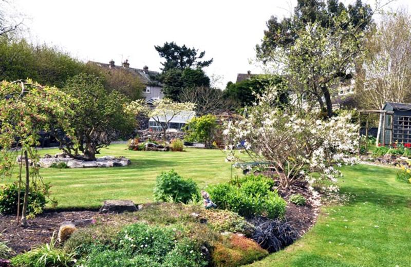 Garden at Ashfield House.