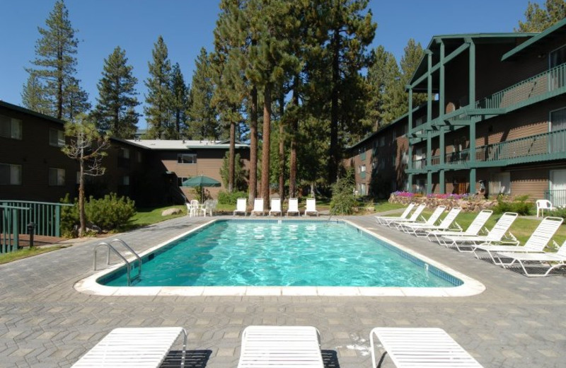 Outdoor Pool at Forest Suites Resort