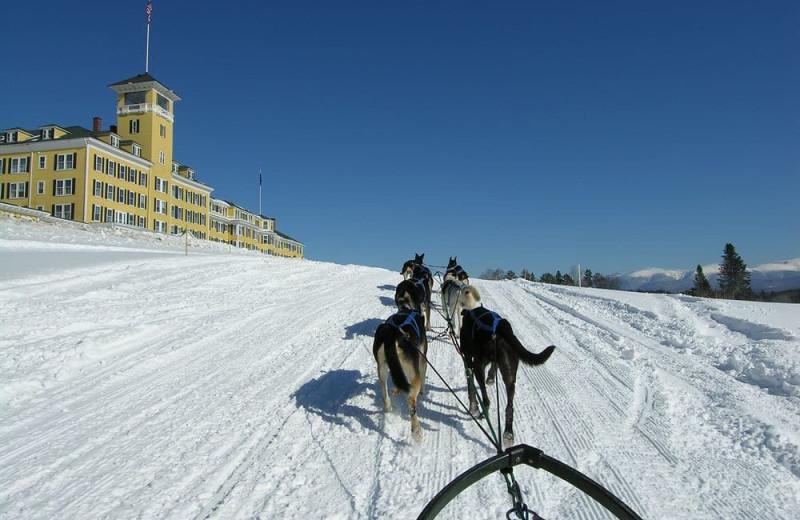 Dog sled at Mountain View Grand Resort & Spa.