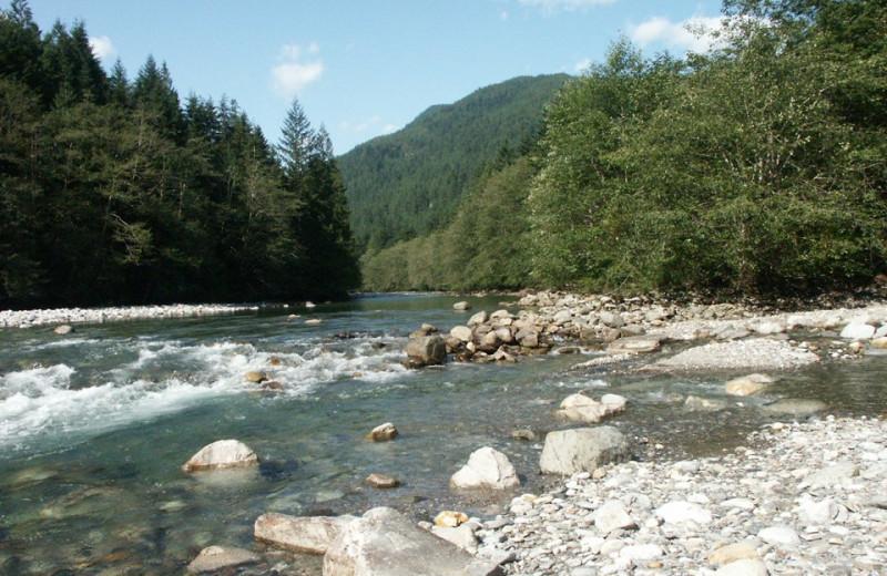 River scenery near Harrison Beach Hotel.