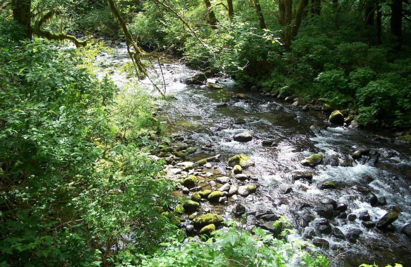 Creek near Old Town Inn.