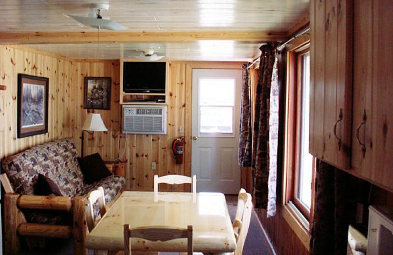 Cabin living room at Balsam Cabin on Elephant Lake.