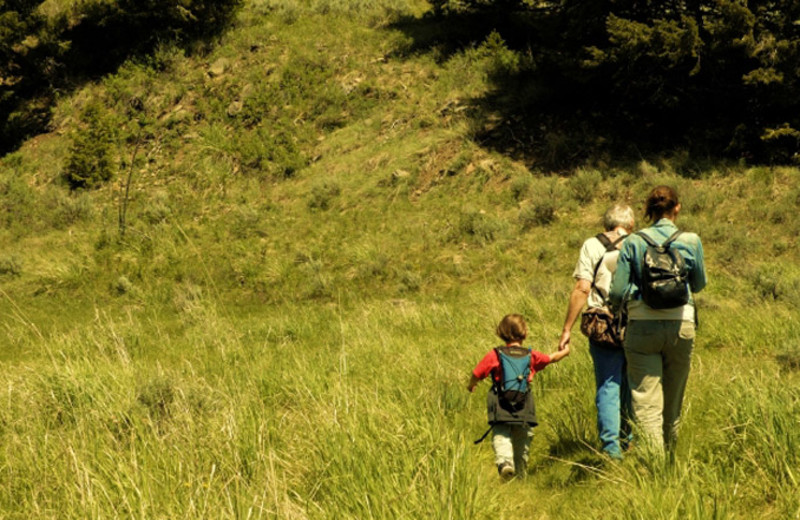 Hiking trails at Aspen Winds.