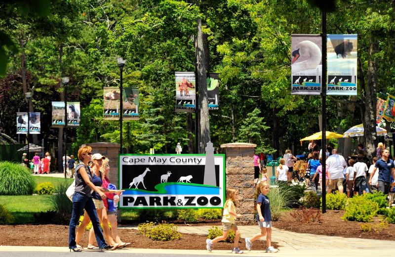 Zoo near Icona Cape May.