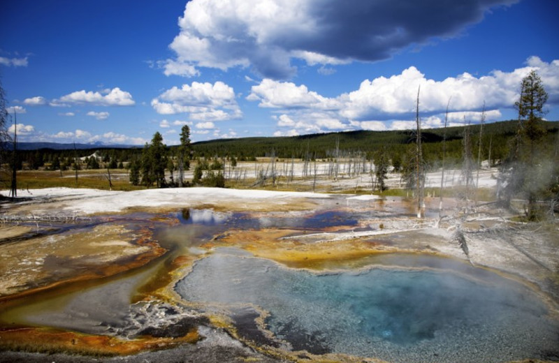 Yellowstone National Park near The Lodge at Big Sky.