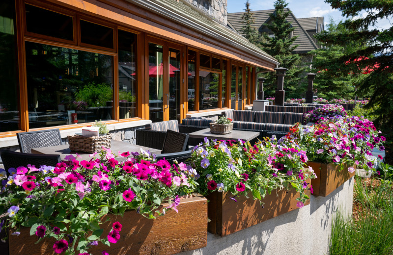 Patio at The Fox Hotel & Suites in Banff.