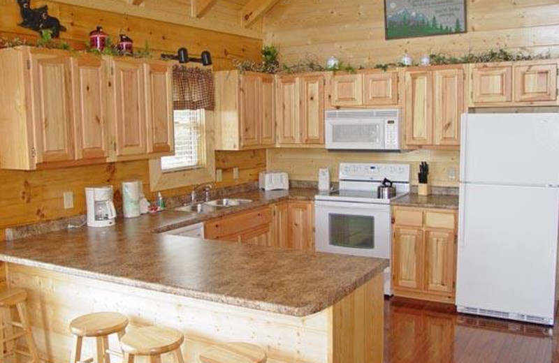 Cabin kitchen at Eagles Ridge Resort.