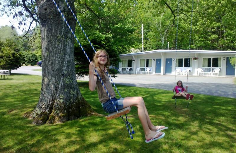 Swings at Bar Harbor Motel.